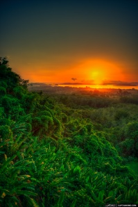 Sunrise Over Rain Forest in Phuket Thailand